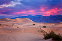 Pink skies over sand dunes